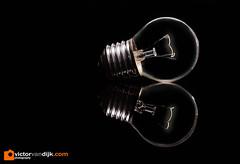 Lightbulb (Victor van Dijk (Thanks for 4M views!)) Tags: light lightbulb elinchrom quadra darkfield grid skyport dark darkness fave fav faved favorite
