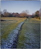 Sutton Park (Scphoto_uk) Tags: 1125 28thdecember2014 55mm fujisuperia400 fujifilm ga546zi scan suttonpark f56