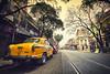 City of Joy || Kolkata (The Canon Fanboy) Tags: cityofjoy kolkata india traveldiaries travelling explore loveforphotography beyondbokeh canon bobbyroy street photographersofindia naturelovers natgeotravel lonelyplanetindia
