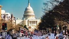 2017.02.04 No Muslim Ban 2, Washington, DC USA 00518