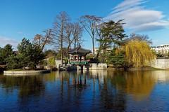 a Korean garden in Paris - 한국 정원 파리 (Franck Zumella) Tags: paris korea korean garden jardin coreen water lake eau lac reflexion reflection blue bleu ciel sky seoul acclimatation 한국 정원 한국정원 파리