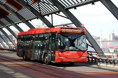 EBS, 4054 (Chris GBNL) Tags: bus ebs egged 4054 rnet scaniaomnilink eggedbusservice bznz36