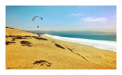 Paragliding, Sand City, CA (- Adam Reeder -) Tags: landscapes adam reeder travel photography photos flickr california californiafavorites united states aviation aircraft flight aeronautical 2015 awesome world photo cool spectacular airplanes paragliding