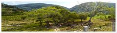 Entrada a la cascada de Tamul (Fotografía by Armando Saldaña) Tags: santa rio méxico landscape mexico waterfall nikon san maria ciudad canyon panoramica entrada luis valles cañon huasteca potosi cascadas gallinas tamul aquismon tamasopo tampaon d3200