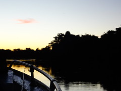 Pantanal (joao.pporto) Tags: trip brazil nature animals brasil landscape landscapes boat fishing rainforest barco jeep natural farm natureza paisagem viagem animais floresta pesca pantanal paisagens matogrossodosul fazenda transpantaneira riocorrente