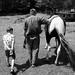 Child.  Man.  Horse.  Walking in Step.