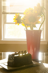 Chocolate in the Morning (flashfix) Tags: stilllife food sunlight window sunshine cake dessert morninglight bucket flora nikon sunflowers vase treat 40mm chocolatecake foodphotography hss 2015 sweetsunday cakelet d7000 nikond7000 happysweetsunday 2015inphotos july052015