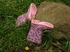 Cat-astrophy - Lost Wellies! (Munki Munki) Tags: old pink cats railway line walkway wellies railwayline pinchinthorpe guisboroughforestwalkway