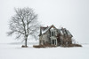 Winter is Coming (Brian Krouskie) Tags: abandoned farm house tree snow snowing decay architecture talbot trail white winter muirkirk morpeth palmyra nikond800 nikon173528
