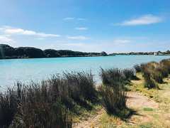 A lake in Anglesea - water so clear and blue (Jenny Herrero) Tags: vanlife travel australia holiday photography landscape camper campervan