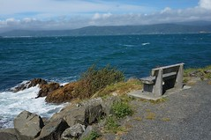 Bench in Miramar (4nitsirk) Tags: bench wellington newzealand