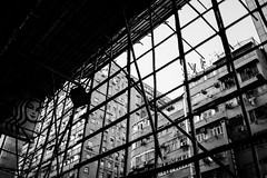 What this city is built on (Huey Yoong) Tags: hongkong streetphotography locals dailylife asia eastasia kowloon kowloonisland nikond600 nikkor35mmf2 manualfocus primelens monotone monochrome blackwhite bw noiretblanc bambooscaffolding construction support