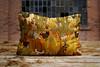 Estampas 2017 Alegraziani (Alegraziani Produto Ilustrado (11) 96175.8787) Tags: almofadas casa decor decoração interiores casaedecor quarto sala decoraçãosala art arte brasil coresdobrasil design designinteriors cactus artista