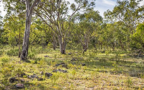 Lot W Cudgegong Road West, Rylstone NSW 2849