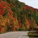 Adirondack Park Fall colours, NY (dgarridosan) Tags: