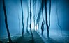 Arrival (J C Mills Photography) Tags: peakdistrict derbyshire lightpainting longexposure night nightphotography torch flashlight england trees woodland forest mist fog