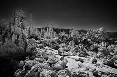 it's like life on the moon... (BillsExplorations) Tags: tufa akaline salt springs monolake towers pinnacles moon alien tufatowers formations california yosemite mountains lake blackandwhite monochrome wow