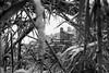 discovering my roots (@ntomarto) Tags: antomarto ntomarto italia italy abruzzo bomba chieti paese paesaggio landscape village cornice frame neve snow biancoenero blackandwhite bw chiesa church