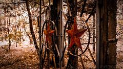 Soviet Autumn (#Weybridge Photographer) Tags: chernobyl chornobyl pripyat ukraine nuclear disaster exclusion zone radiation reactor urban decay decaying abandoned discarded adobe lightroom canon eos dslr slr 40d duga gate gates soviet red star autumn