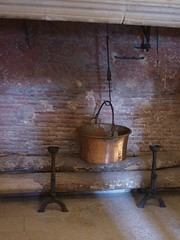 Copper pot hearth (kattebelletje) Tags: châteaudechenonceau loire france castle hearth copperpot pan kitchen tours 2016