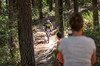 9 Dane Nimmo, Round 2 DCoNZ Summer DH Series, Pakuratahi Rd, Hawkes Bay, NZ - 14/1/17 (Grumpy Eye) Tags: nikon d7000 nikkor 105mm 28 pakuratahi block downhill mountain bike round2 9danenimmo
