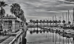 At least I'll enjoy the ride. (Kathryn Louise18) Tags: canon florida kathrynlouise bw blackandwhite monochrome marina sailboat boats reflection palmtrees gratefuldeadlyrics roberthunterlyrics