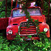 Final Resting Place of an old decaying red fire truck, old bus vehicle covered in overgrown vines ab