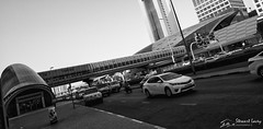 Metro (stewartl2010) Tags: bw cars monochrome station architecture dubai traffic metro middleeast walkway emiratestowers unitedarabemirates ae sheikhzayedroad nikfilters silverefexpro2