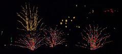 CW362 Longwood Gardens Christmas Lights (listentoreason) Tags: usa night america canon unitedstates pennsylvania scenic favorites places longwoodgardens ef28135mmf3556isusm holidaylighting score30