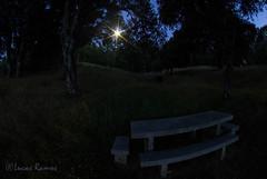 IMG_3399.jpg (heken10) Tags: pez canon ojo banco luna anochecer bierzo ponferrada toreno