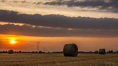 Endless (ElmerstarK) Tags: sunset france field paysage fr bourgogne champ coucherdesoleil côtedor champdôtre