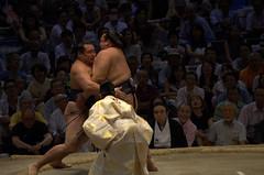 Kakuryu vs Kisenosato 3