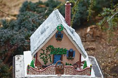 Gingerbread house in the Garden! (ineedathis,The older I get the more fun I have....) Tags: storybookhome garden 2016gingerbreadhouse snowman front gate frontentrance atticeyewindow logs logsplittier axe steppingstones fence stonefence window decor slate lightposts heart ivyclimber carrot stones eave roof royalicing buttons bricks coal gingerbreadhouse christmas christmastree snow flowers miniature sugarwork gum paste modeling baking nikond750 closeup ivy glitter fairytalecottage weepingatlascedar tree ornamentaltree pecans nuts