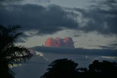 Summer storm (Images by Jeff - from the sea) Tags: nikon d5500 dusk nikkor nikkor18200mm twilight sky storm clouds palmtrees pink pinksunset pinkclouds 500v20f 1000v40f 1500v60f