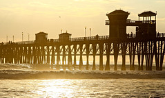 Lucidity (KC Mike D.) Tags: sunset waves golden light pier oceanside pacific coast west sunshine reflection shimmering lucidity surf structure wood birds socal dream