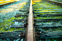 Railway to nowhere (enrique.torrens) Tags: portugal train station beira marvao december 2016 abandon railway iron wood nikon 35mm f18 d3200