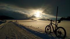into the sun (twinni) Tags: mw1504 15012017 bike biketour mtb salzburg austria österreich flachgau winter schnee bergziege winterbike winterradl 20
