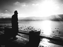 Bad mood - 45th President of the United States (René Mollet) Tags: zürich sunrise lake man bad lonely blackandwhite bw renémollet street streetphotography silhouette schwarzweiss monchrom monochromphotographie cold