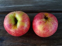 Pink Lady Apples