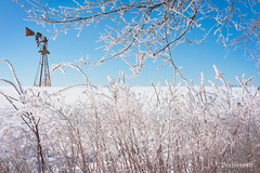 Frosty (Peeblespair) Tags: peeblespairphotography frost winter landscape rural farmwindmill windmill agriculture frosty blue white
