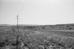 New Mexico on Film: Roadside [2] (jwbeatty) Tags: smcpm28mmf28 35mm analog bw blackwhite blackandwhite film filmisnotdead flying fromabove fuji fujiacros100 ishootfilm landscape mesuper nature newmexico pentax pentaxart planewindow powerlines project365