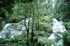 Triple Falls (JPS Photography1) Tags: australia nikon d7000 trees waterfall water cascade nature