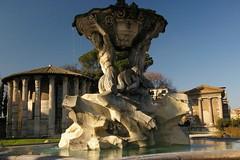 Rome 2010 963