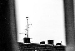 gegenber (Marlena F.) Tags: roof blackandwhite white black berlin film rooftop home window analog germany minolta oldschool dach charlottenburg srt101 nachbar bln analogical dcher schwarzweis gegenber