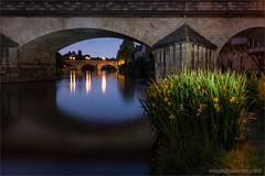 Sous le pont d'Argenton (Beardy Git) Tags: longexposure bridge flowers iris sunset france night river dark lights evening indre dusk creuse argenton argentonsurcreuse canoneos7d efs1585mmf3556isusm
