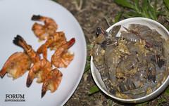 XOKA4693s (forum.linvoyage.com) Tags: food fish greek fire salad salt shrimp bbq grill meal coal prawn folie             phuketian forumlinvoyagecom httpforumlinvoyagecom phuketphotographernet