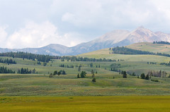 Velvet way to the mountains (pentars) Tags: park trees summer mountains green nature field clouds landscape scenery view pentax sigma hills yellowstone picturesque f4 k5 100300 k5ii