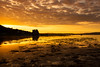 whisky sunset (ally bally bee) Tags: atmospheric sunset lowlightphotography landscape water reflections colours shadows shoreline seaweed contrast isleofarran lochranza lochranzacastle historicscotland clouds evening historic island light manfrottotripod nature outdoors orange scotland sonycameras sonyphotographing sigmalens sonya77 tripod view weather wideanglelens sky yellow yacht boats harbour