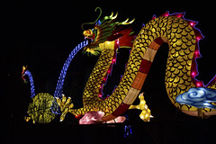 Magic Lanterns Festival Leeds December 18th 2016 (ShakeyDave) Tags: leeds city roundhay park chineese lanterns lights christmas 2016 night december nikon d750 shakeydaves david stevens walk west yorkshire north colour colourfull magic festival