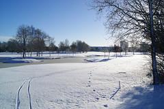 Small lake (Steenjep) Tags: vinter winter jylland danmark denmark sne snow herning sol sun sky himmel blå hvid skygge shadow reflex